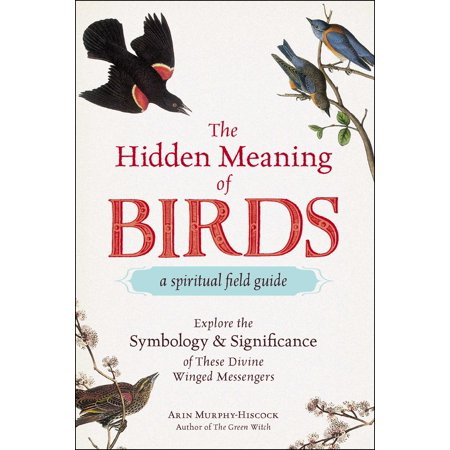 The Hidden Meaning of Birds--A Spiritual Field Guide : Explore the Symbology and Significance of These Divine Winged