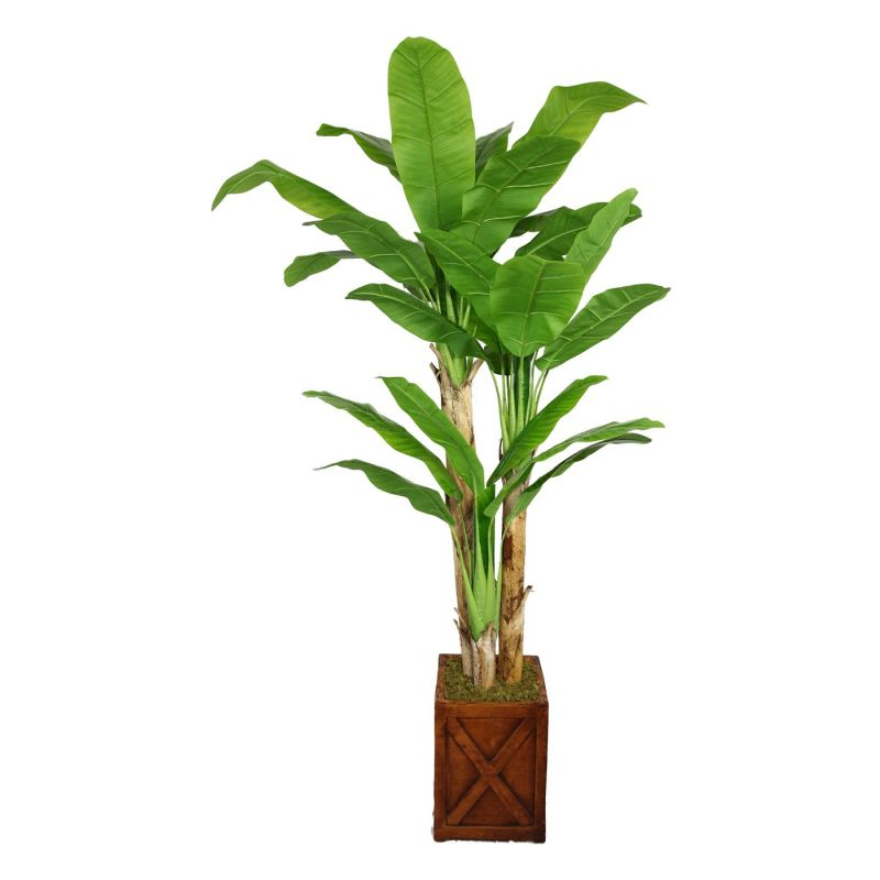 Laura Ashley by Vintage Home 81-in Tall Banana Tree with Real Touch Leaves in 13-in Fiberstone Planter 48L 48W 81H