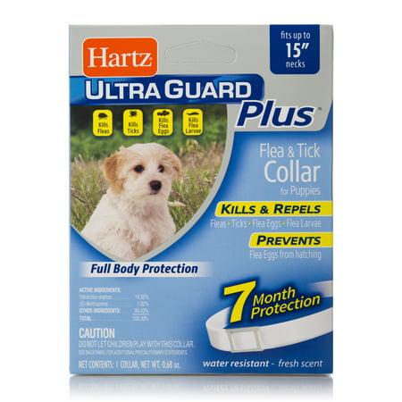 Hartz UltraGuard Plus Flea and Tick Puppy (Tick Collar)