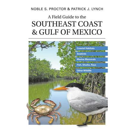 A Field Guide to the Southeast Coast & Gulf of Mexico : Coastal Habitats, Seabirds, Marine Mammals, Fish, & Other