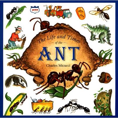 The Life and Times of the Ant - Ants Life
