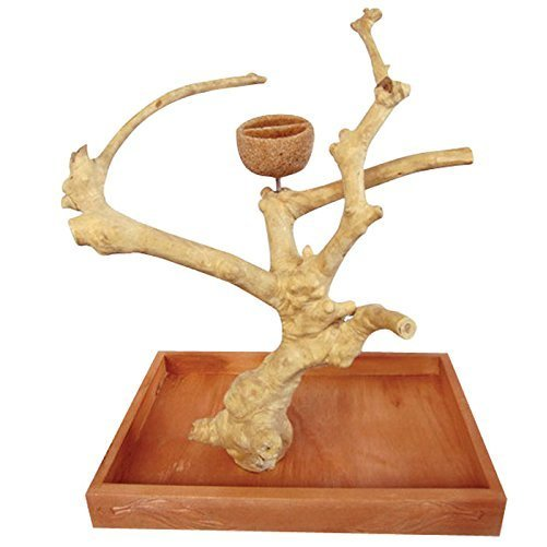 "A&E Cages XSmall Java Wood Table Top Bird Play Stand 8""x5""x11"""