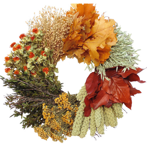 Dried Flowers and Wreaths LLC Oak Harvest Wheel Wreath