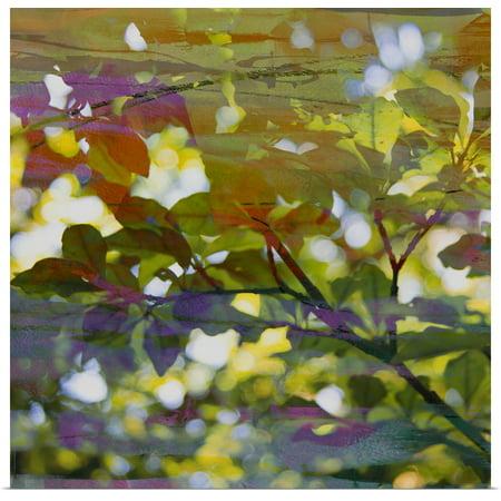 Great BIG Canvas | Rolled Sisa Jasper Poster Print entitled Abstract Leaf Study II