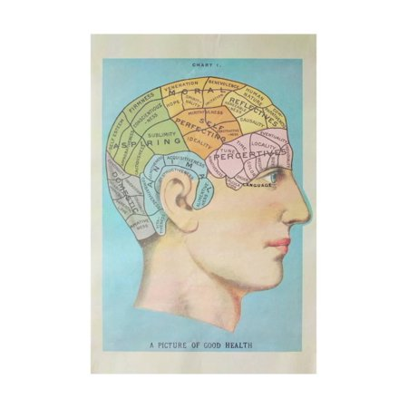A Picture of Good Health - Vintage Cognitive Science Lithograph Print Wall Art By Lantern (Vintage Lithograph)