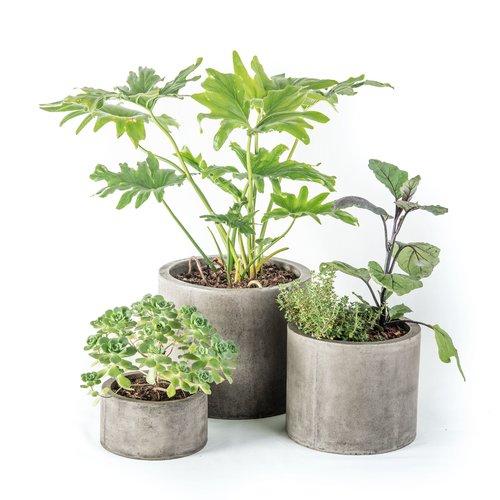 My Spirit Garden Mateo 3-Piece Composite Pot Planter Set by Garden Planters