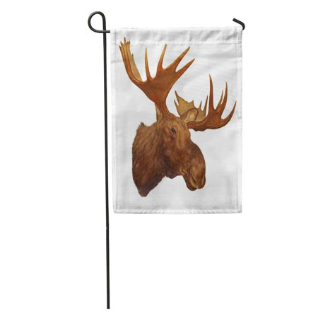 SIDONKU Taxidermy Moose Head Antler White Trophy Big Rack Wilderness Garden Flag Decorative Flag House Banner 28x40 inch ()