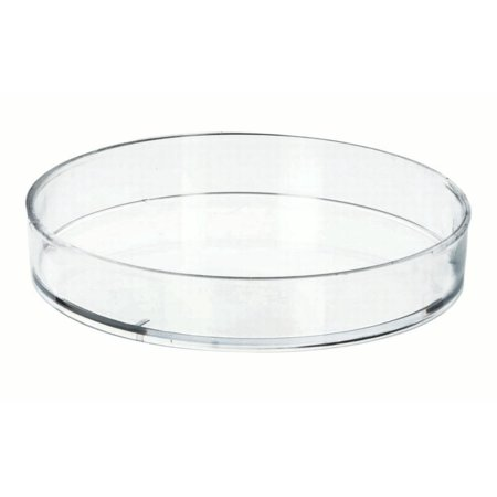 Disposable Petri Dish 60 x 15 mm, molded in Polystyrene - Single - Sterilized - Eisco Labs