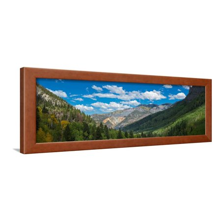 Elevated view of trees on landscape along Country Road 361, Camp Bird Road, San Juan Mountains,... Framed Print Wall Art (361 Wall)