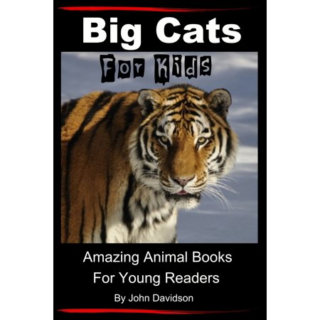 Big Cats: For Kids - Amazing Animal Books for Young Readers - eBook