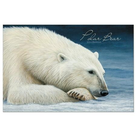 Polar Bear Invitations (Tree-Free Greetings Polar Bear Nap EcoNotes Blank Note)