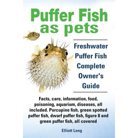 Puffer fish as pets freshwater puffer fish facts care for Fish based dog food