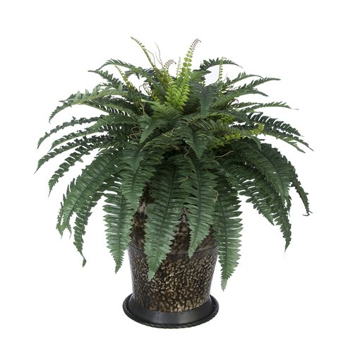 House Of Silk Flowers Inc Artificial Fern Floor Plant In Planter