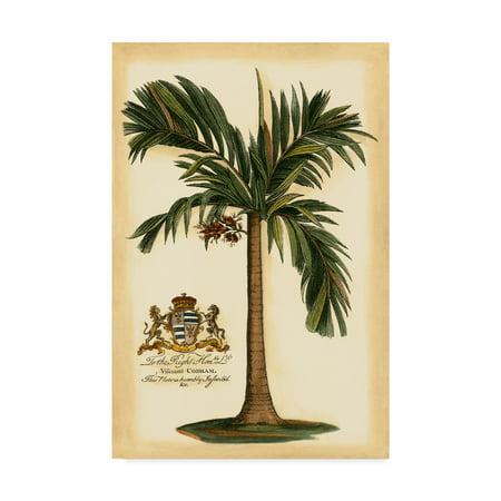 Trademark Fine Art 'British Colonial Palm I' Canvas Art by Vision Studio ()