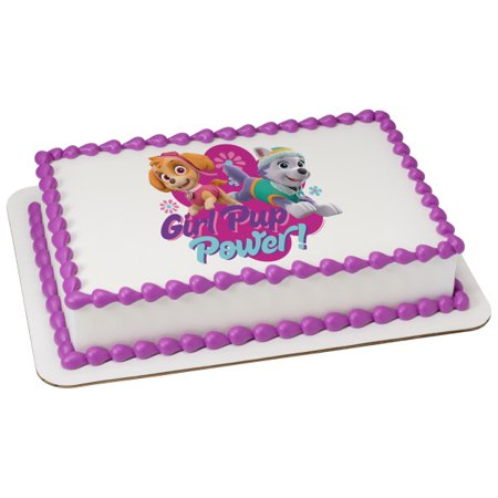 Paw Patrol Girl Pup Power 1/4 Sheet Image Topper Birthday Party Favor