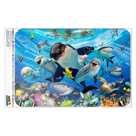 Underwater Ocean Selfie Orca Shark Dolphin Sea Turtle Coral Home Business Office Sign - Window Sticker - 12