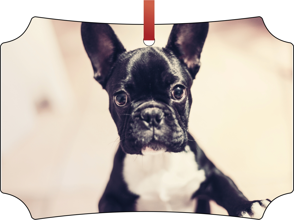 French Bulldog Birthday Cake Topper Personalised Double sided Glitter Card
