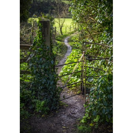 Post A Halloween Pic (A pathway through a gate with ivy growing on the post Bath England Poster Print by Leah Bignell  Design)