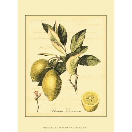 Petite Fruit (Petite Tuscan Fruits II Art Print )