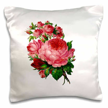 3dRose Victorian English Pink Roses and Rose Buds Illustration - Pillow Case, 16 by 16-inch