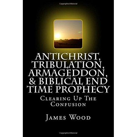 Antichrist, Tribulation, Armageddon, & Biblical End Time Prophecy: Clearing Up the Confusion - image 1 of 1