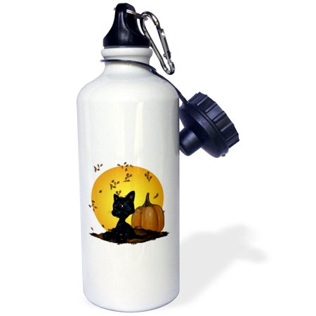 3dRose Black Cat With Pumpkins And Halloween Moon, Sports Water Bottle, 21oz - Sports Halloween Pumpkins