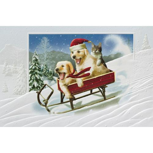 Pack of 16 Sledding Dogs and Cat Fine Art Embossed Christmas Greeting Cards