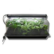 National Garden Wholesale SunBlaster Nano Dome Plant Propagation Combo Kit - Greenhouse Dome & LED Light