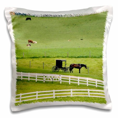 3dRose Amish farm with horse buggy near Berlin, Ohio - US36 DFR0008 - David R. Frazier, Pillow Case, 16 by 16-inch