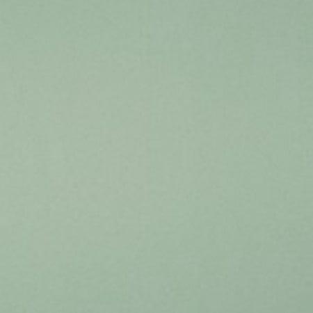 Opal Bullseye Coe 90 Glass - Bullseye 90 coe Glass - CELADON OPAL DOUBLE ROLLED