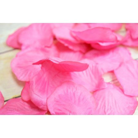 Bulk Confetti (Quasimoon Fuchsia / Hot Pink Silk Rose Petals Confetti for Weddings in Bulk by)