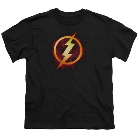 Youth: The Flash- Incandescent Logo Apparel Kids T-Shirt - - The Flash Kids