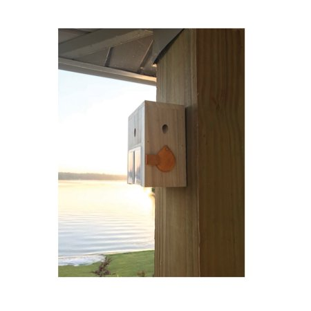 Bees N Things BEES-STND Carpenter Bee Trap