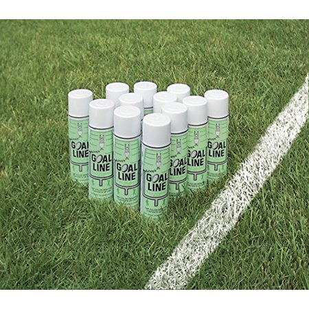 Aerosol Field Marking Paint - White - Case of 12 Cans