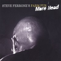 Stephen Ferrone - Steve Ferrone's Farm Fur More Head [CD]