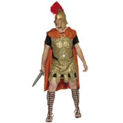Roman Soldier Complete Armor Adult Costume