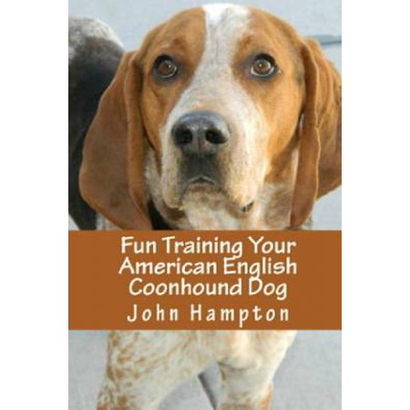 Fun Training Your American English Coonhound Dog American English Coonhound Dog