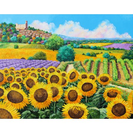 Jean-Marc Janiaczyk Stretched Canvas Art - Vineyards and sunflowers ...
