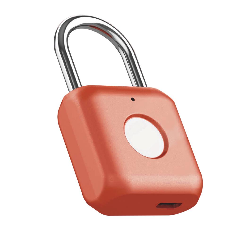 Smart Fingerprint Door Lock Keyless Anti-theft Security Padlock USB for Luggage