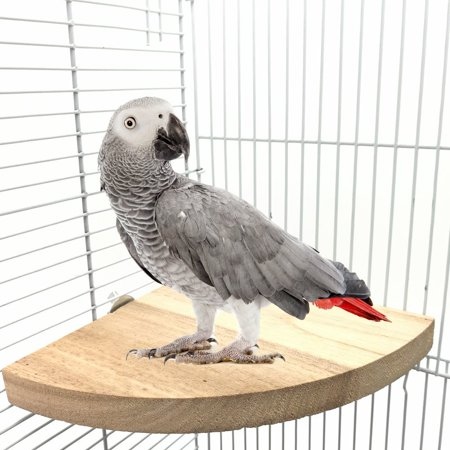 Wooden Parrot Bird Cage Perches Round Coin Stand Platform,Budgie Toys,Bird Stand for Parakeets
