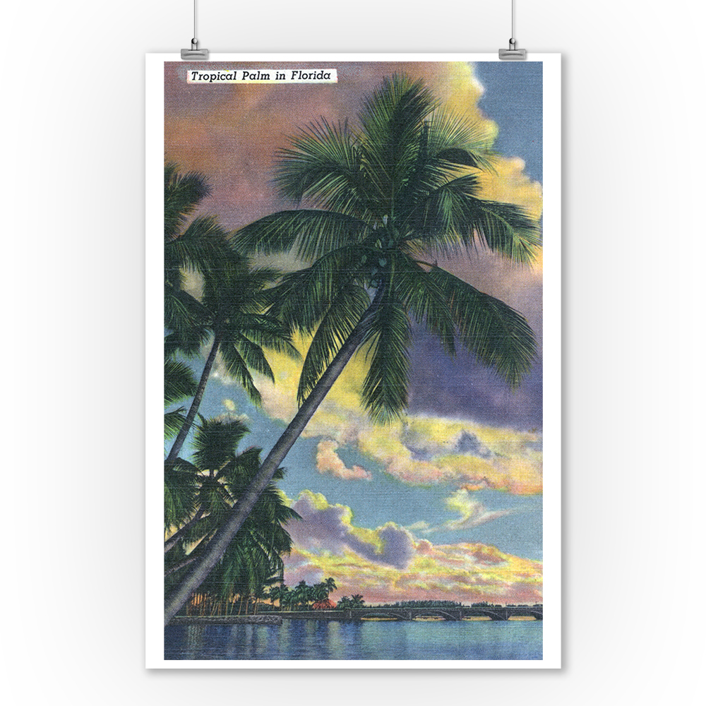 Florida - View of a Palm during Sunset (9x12 Art Print, Wall Decor Travel Poster)
