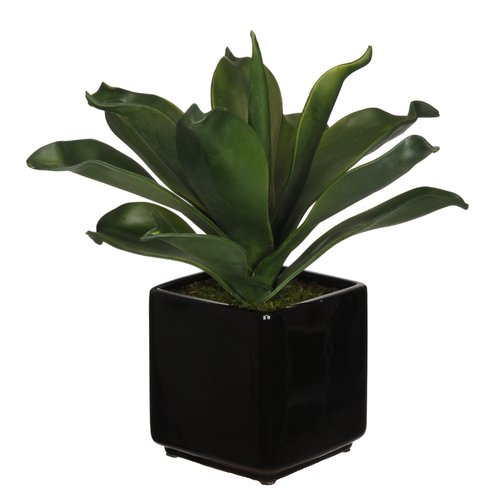 House of Silk Flowers Inc. Artificial Agave Succulent Desktop Plant in Planter