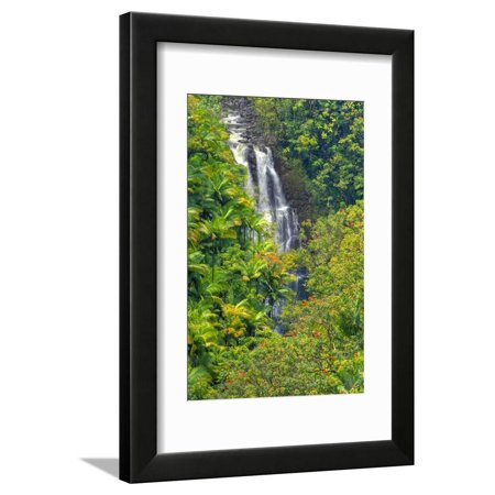 EAN 4699256179255 product image for Rainforest around Nanue Falls on Hawaii Island Framed Print Wall Art By Ron Dahl | upcitemdb.com