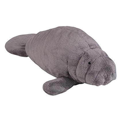 Stuffed Manatee (*plush 14