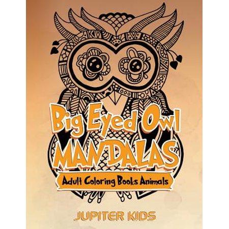 Big Eyed Owl Mandalas : Adult Coloring Books