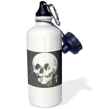 3dRose All Is Vanity - ghost, halloween, optical illusion, paranormal, seasonal, silhouette, skeleton, Sports Water Bottle, - Illusions Mansfield Halloween