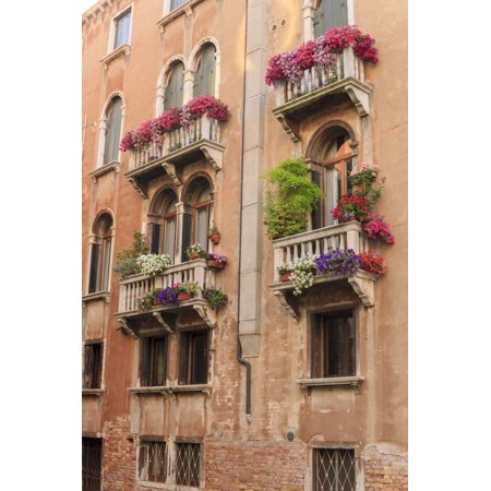 Venice Flower - Flower Decorating Windows. Venice. Italy Print Wall Art By Tom Norring