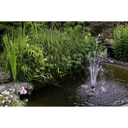 LAMINATED POSTER Pond Nature Aquatic Plant Garden Fountain Water Poster Print 24 x 36