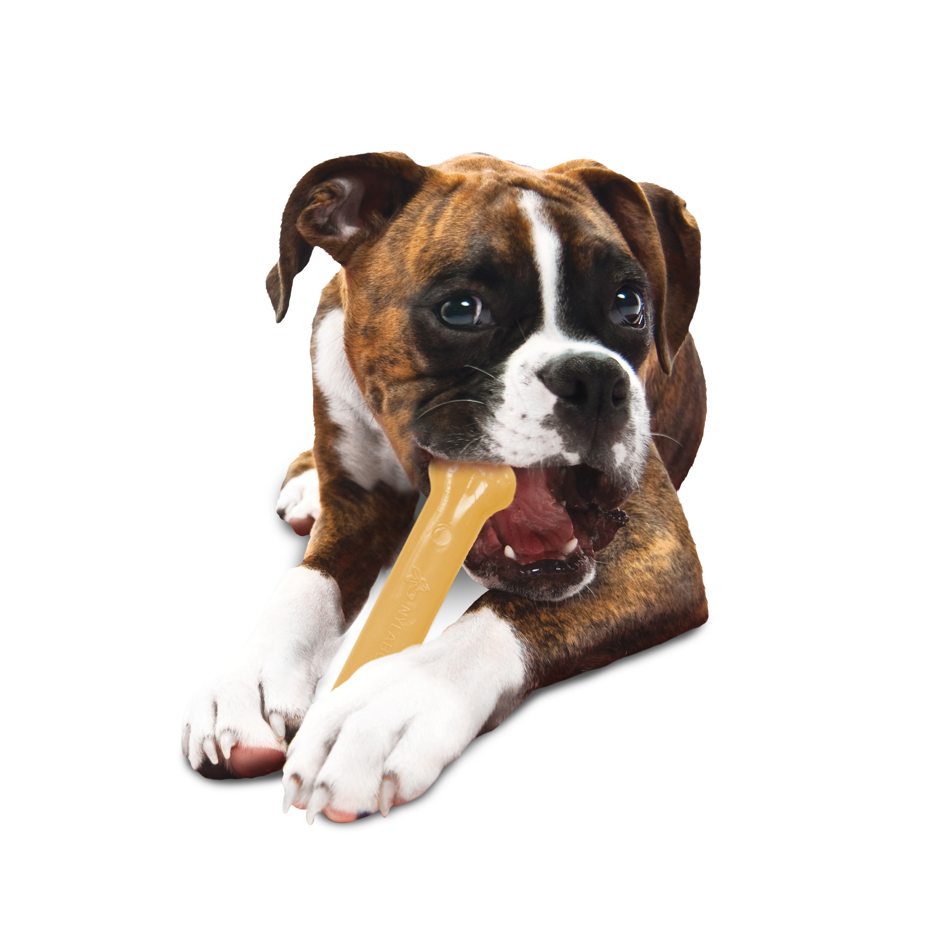 Nylabone Power Chew Dura Chew Original Flavored Bone Chew Toy, Giant