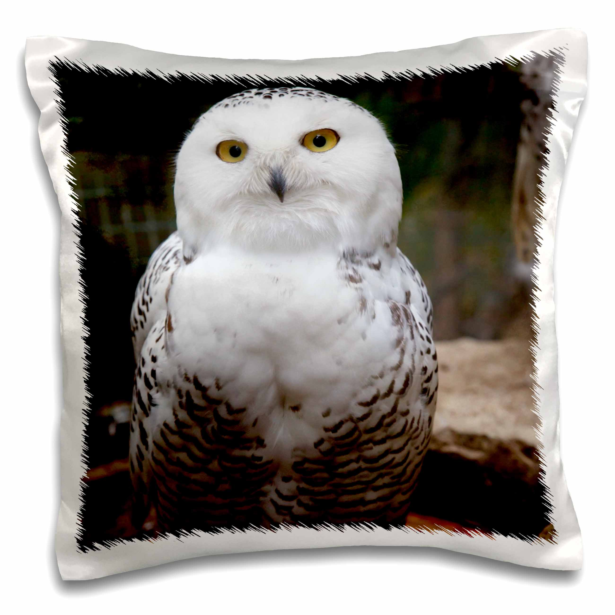 3dRose Pretty White Snowy Owl- Birds- Animals, Pillow Case, 16 by 16-inch